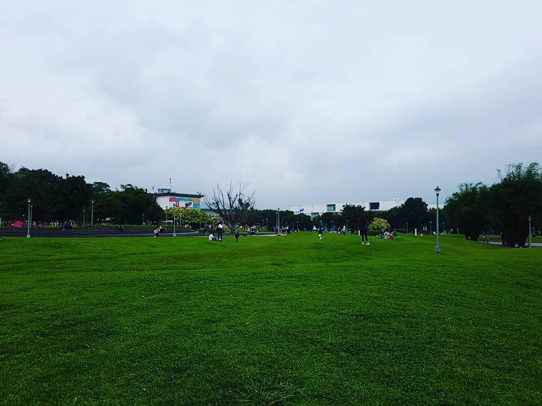 petsyoyo寵遊網-花博公園-圓山園區