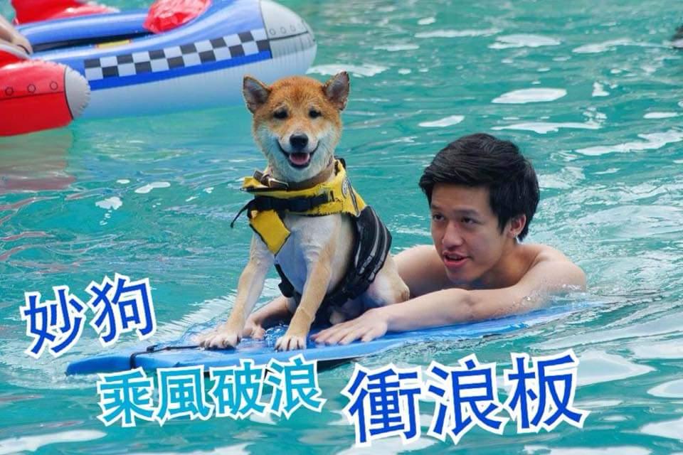 Gooddog妙狗寵物游泳池