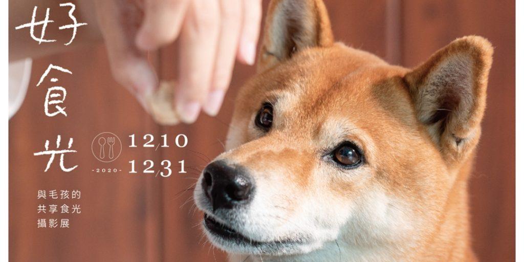台北寵物活動-2020好食光 與毛孩共享食光攝影展
