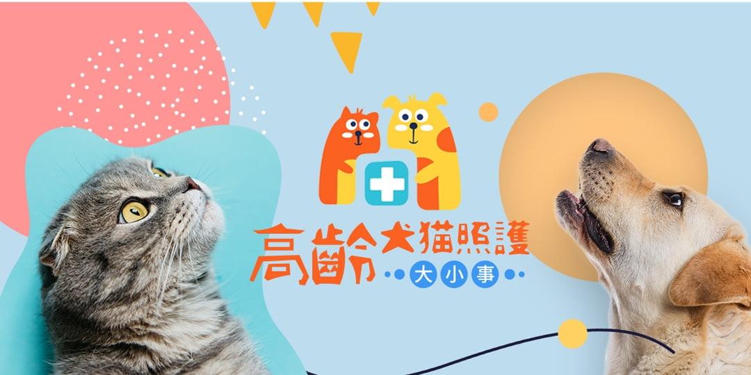 台北市寵物活動-2020_高齡犬貓照護大小事