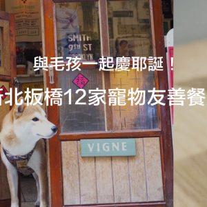 2020 與毛孩一起慶耶誕!新北板橋12家寵物友善懶人包(2020.12.4更新)