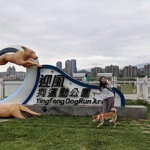 【台北】迎風狗運動公園面積超大且有圍籬的台北狗狗運動公園