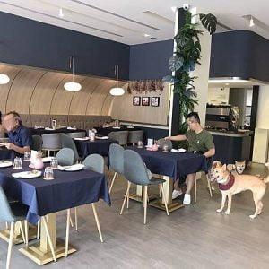 【台中寵物友善餐廳】77's Bistro&bar