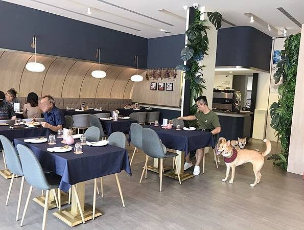 台中寵物友善餐廳-77's Bistro&bar_米克斯菲菲的走跳日記提供