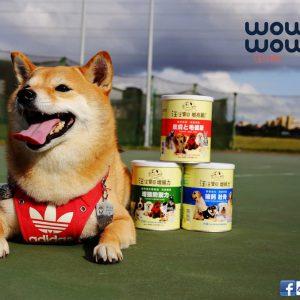 【狗狗營養品推薦】汪汪寶貝營養三劍客〜毛孩爸媽必備!狗狗營養品、狗狗腸胃保健,守護狗狗的健康,點這篇!