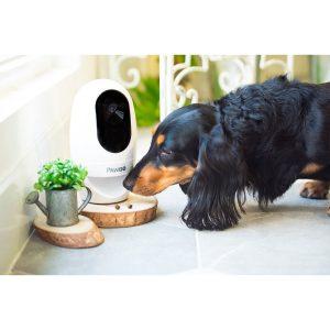 PAWBO寵物互動攝影機–看得見的陪伴