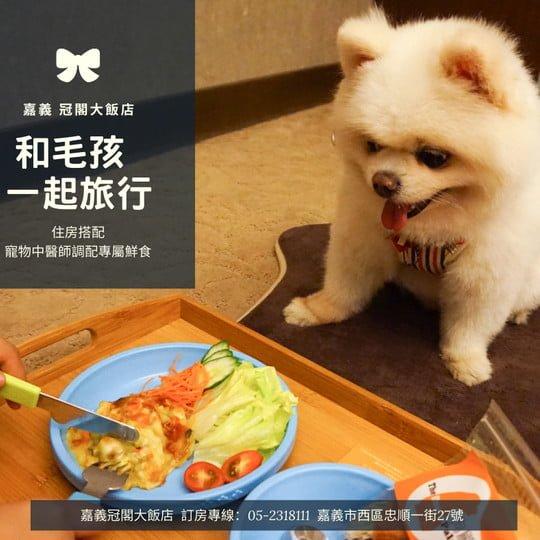 冠閣大飯店-【毛小孩一泊一食】寵物鮮食食補餐點